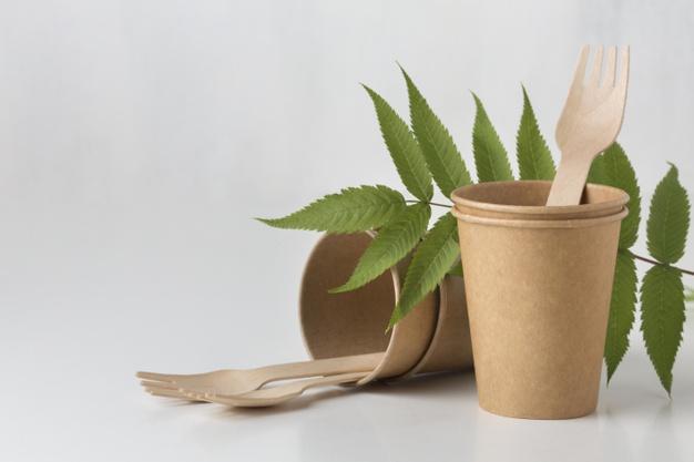 biodegradowalny kubek i drewniany widelec